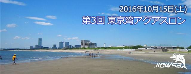 第3回東京湾アクアスロン大会