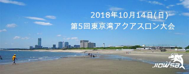 第5回東京湾アクアスロン大会